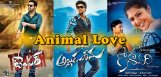 animal-welfare-vs-film-industry