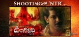 shooting-for-ntr-role-started-in-vangaveeti-film