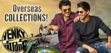 -Venky-Mama-Going-strong-In-Overseas