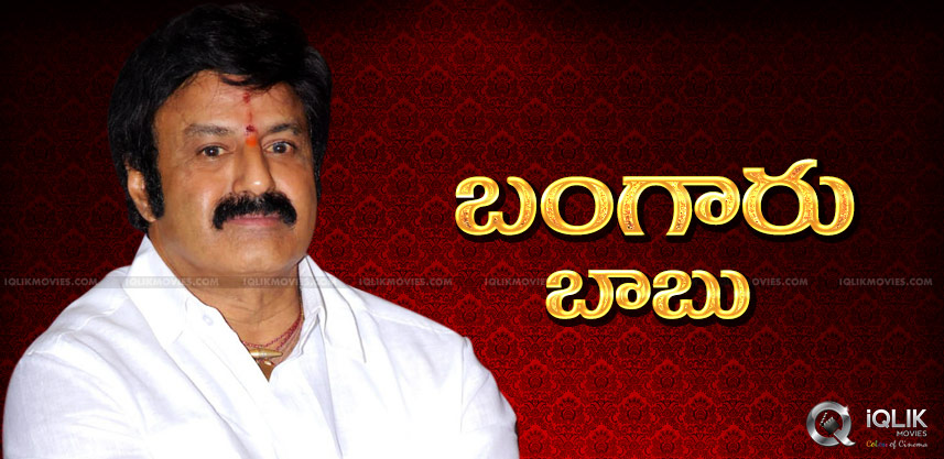 nandamuri-balakrishna-plans-as-hindupur-mla