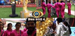 Bigg Boss Telugu: Episode 17: Physical Task Creates Curiosity