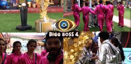 bigg-boss-telugu-episode-17-physical-task-creates-curiosity
