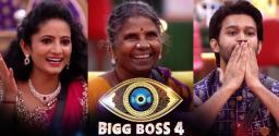 bigg-boss-telugu-4-sujatha-gangavva-abhijeet-safe