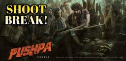 pushpa-shoot-break