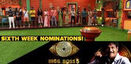 bigg-boss-telugu-ep-37-10-members-in-the-nominations