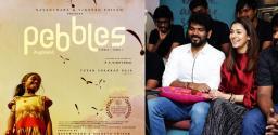 India's Official Entry at Oscars: Vignesh & Nayan's Pebbles