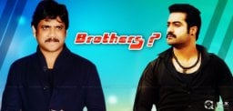 nagarjuna-ntr-brothers-in-vamshi-paidipally-movie