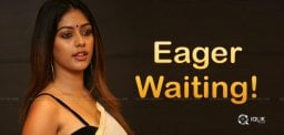 anu-emmanuel-looking-telugu-offers