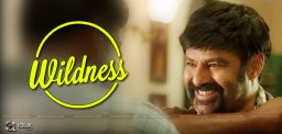 balakrishna-real-stunt-in-paisa-vasool-movie