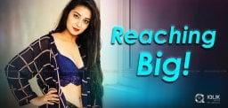 bhanu-bags-big-on-small-screen