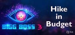 bigg-boss3-budget-estimates-details