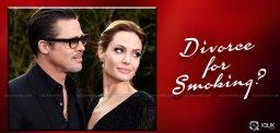 speculations-on-angelina-jolie-brad-pitt-divorce