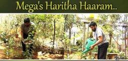 chiranjeevi-haritha-haram-tollywood-celebs