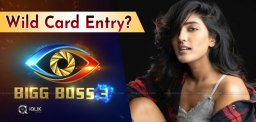 eesha-rebba-wild-card-entry
