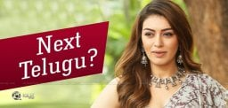 Hansika's Next In Telugu With That Hero?