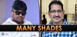 harish-shankar-has-shades-of-bheemineni