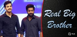 jr-ntr-is-the-real-big-brother-in-tollywood