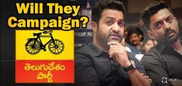jr-ntr-kalyan-ram-may-campaign-for-tdp