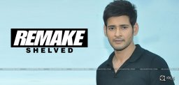 speculations-on-mahesh-srimanthudu-hindi-remake