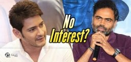 Still, Mahesh Has No Interest In It?