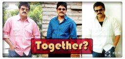 telugu-movie-manam-crosses-40-cr-collections