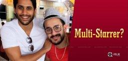 akhil-chaitu-multi-starrer-soon