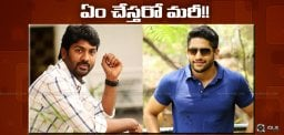 discussion-on-nagachaitanya-kalyankrishna-film