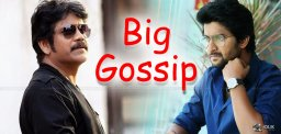 nagarjuna-nani-film-remake-of-johnnygaddaar