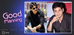 discussion-on-pawan-kalyan-mahesh-details