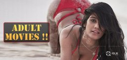 poonam-pandey-adult-movies