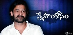 prabhas-extends-support-for-bhale-manchi-roju