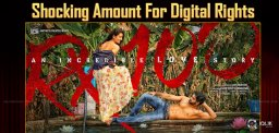 rx100-movie-satellite-digital-rights-details