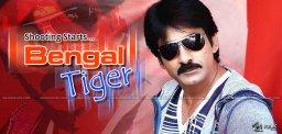 ravi-teja-bengal-tiger-shooting-details