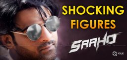 shades-of-saaho-chapter-two-shocking-record