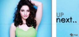 tamannah-with-raviteja-in-sampath-nandi-film