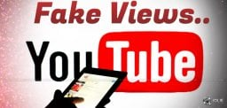 youtube-fake-views-business-details-