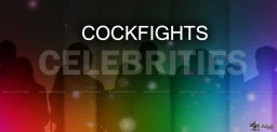 tollywood-celebrities-to-attend-cockfights