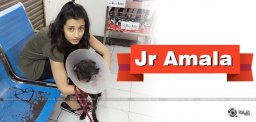 trisha-is-naming-as-junior-amala-exclusive-news