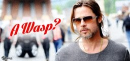 scientist-named-wasp-named-after-brad-pitt