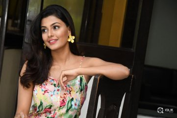 Anisha Ambrose At Fashion Designer Movie Success Meet