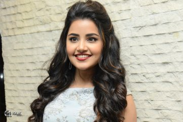 Anupama Parameswaran At Vunnadhi Okate Zindagi Movie Pre Release Function
