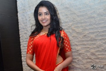 Anupama Parameswaran at Shatamanam Bhavati Movie Success Meet