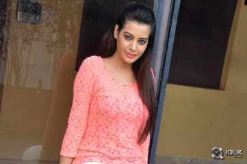 Diksha Panth at Kavvintha Movie Press Meet