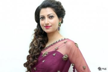 Hamsa Nandini at Bengal Tiger Movie Audio Launch