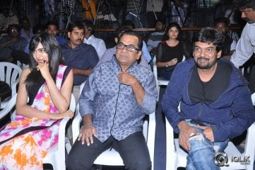 Heart Attack Audio Success Meet