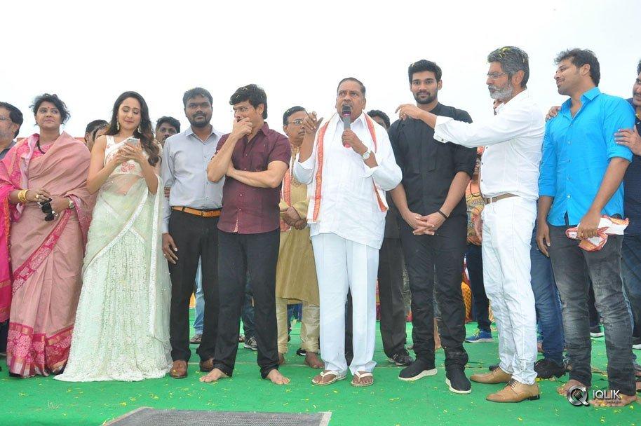 Jaya-Janaki-Nayaka-Movie-Vijayotsava-Veduka-At-Hamsala-Deevi