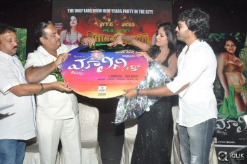 Malini and Co Movie Audio Launch