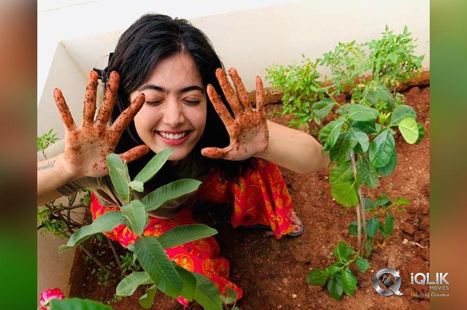 Rashmika-Mandanna-accepted-Green-India-Challenge