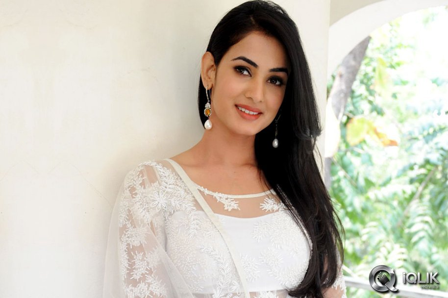 Sonal Chauhan 2018: Sonal Chauhan At Legend Movie Press Meet
