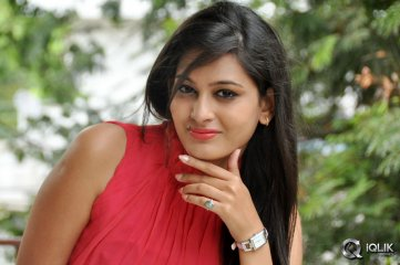Swetha Jadhav at Inka Emi Anukoledu Press Meet